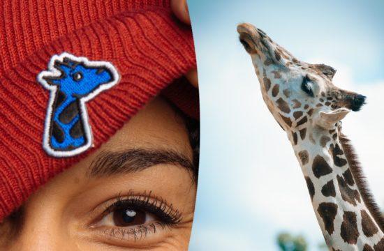 Mode éthique : Girafon Bleu, la marque engagée dans la sauvegarde des girafes !